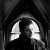 Supernatural - Sympathy for the devil Spnwindowdean-2b6d863